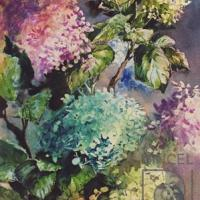 Hortensias Coloreadas por Hine, Ana Griselda